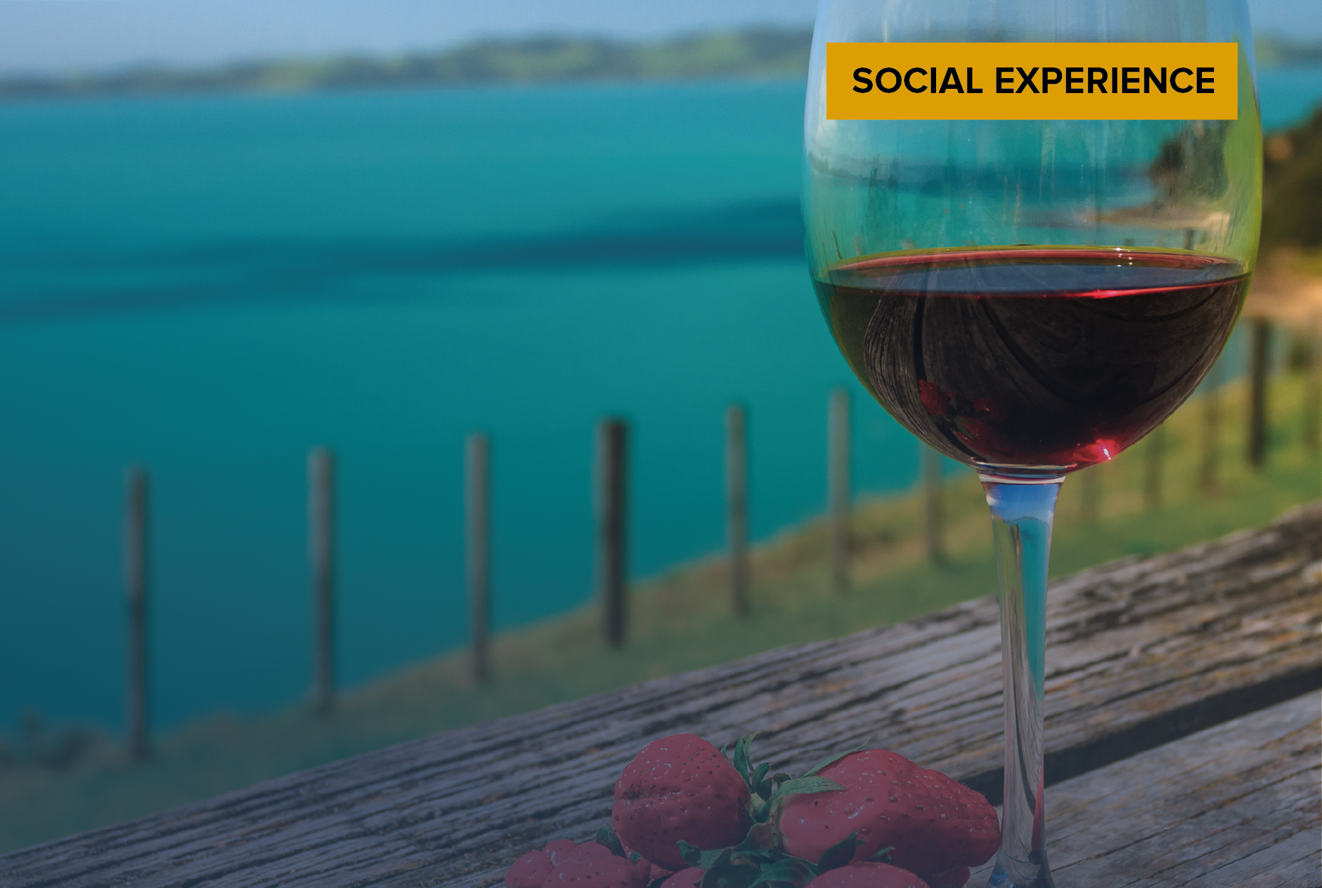 Wine Society New Zealand